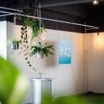 NR42-Office-11b